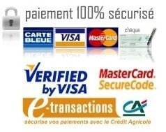 secure1visa.jpg