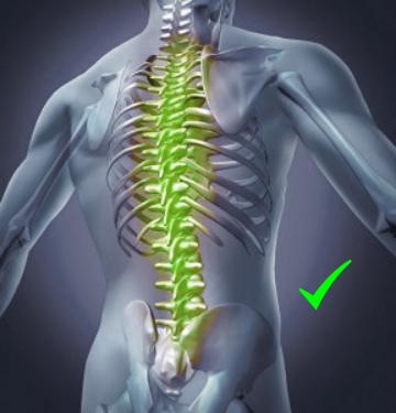 Back spine OK
